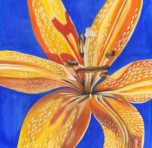 """""""Yellow lily"""""""