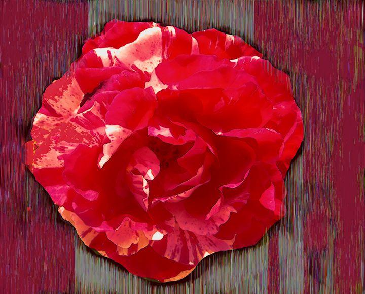 FLOWER 163 - Pepsiart