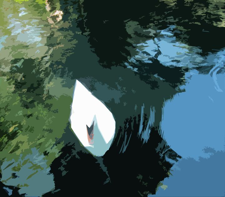 Swan CO - Pepsiart