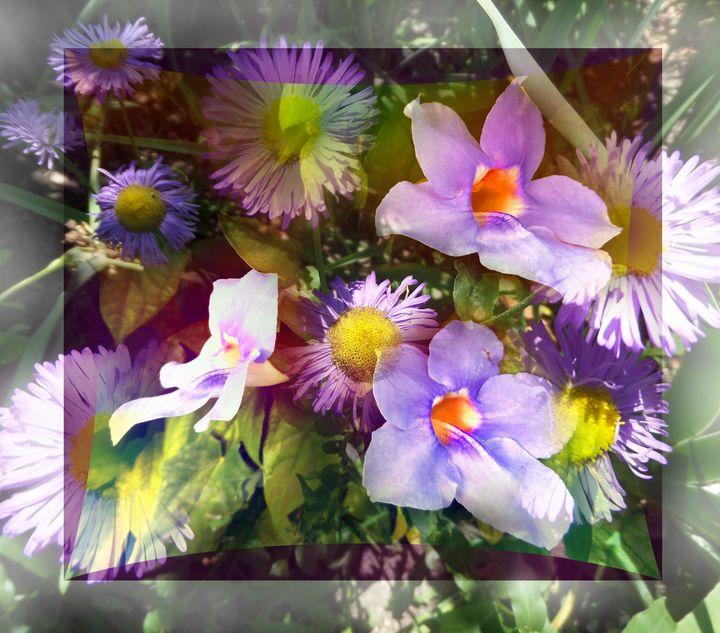 FLOWERS 223 - Pepsiart