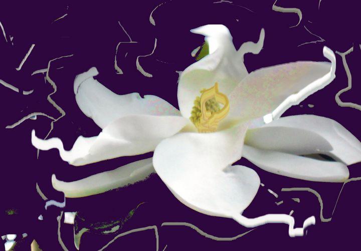 magnolia spray - Pepsiart