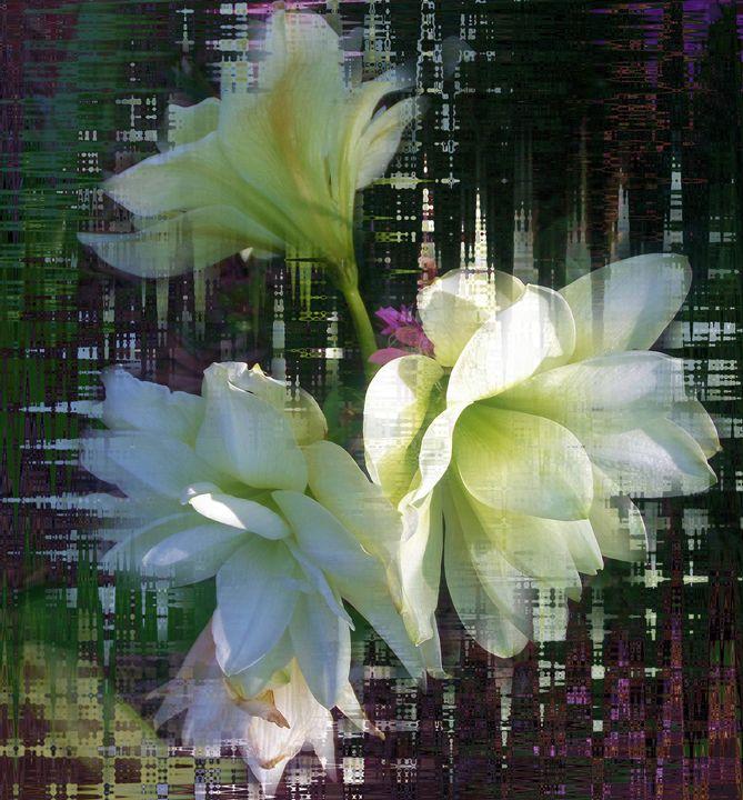 Flower23 - Pepsiart
