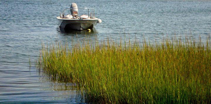 Boat31 - Pepsiart