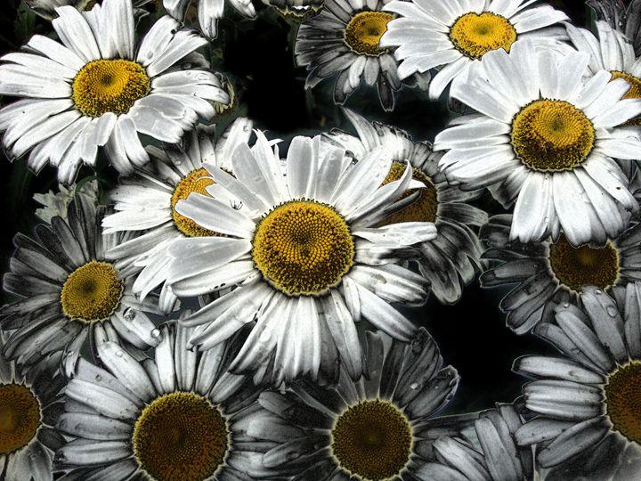 FLOWERS 126 - Pepsiart