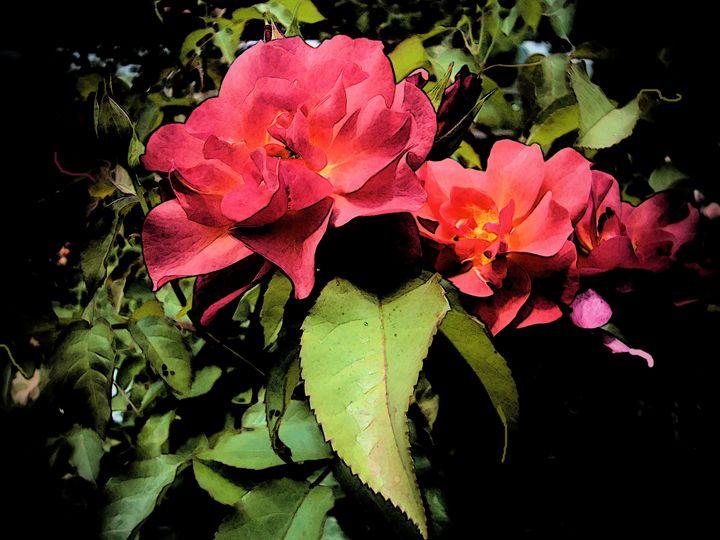 FLOWERS129 - Pepsiart