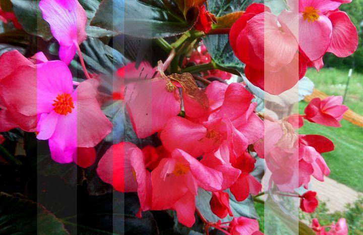 Flowers 136 - Pepsiart
