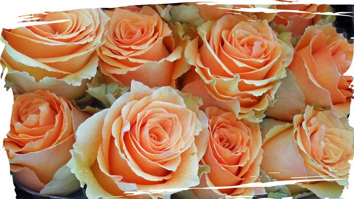 Flowers 138 - Pepsiart