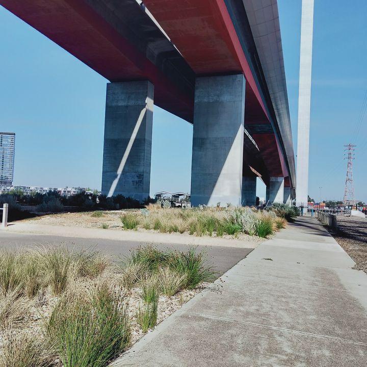 under the bridge - Dellene  Becker