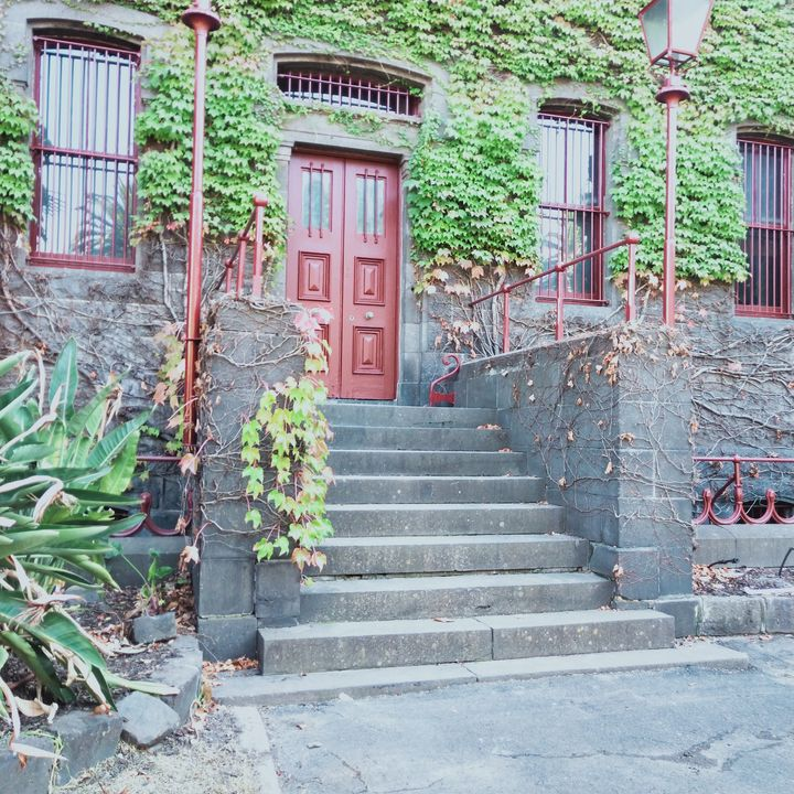 Ivy covered entry and steps - Dellene  Becker