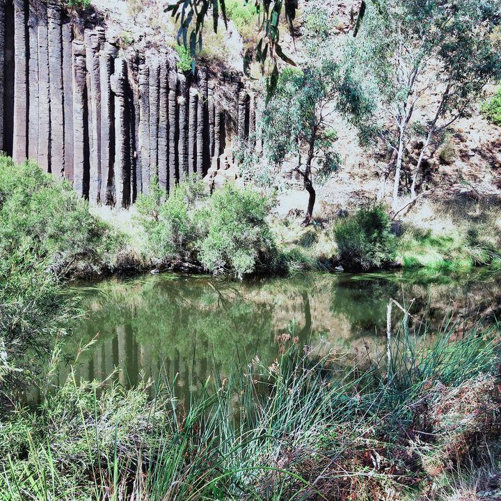 Tranquil Oasis - Dellene  Becker