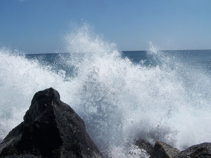 Splash !!! - C&R Creations