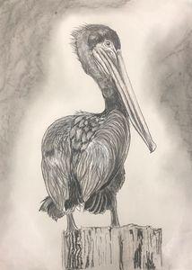 Pelican Guard