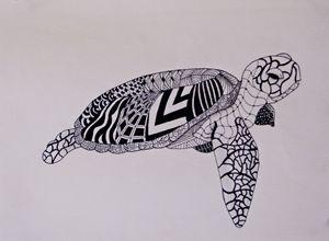 Turtle Zen