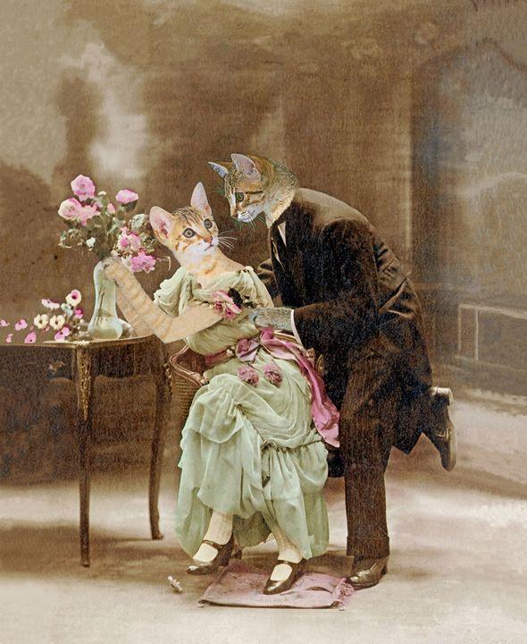 Cats in love 1900 - Neko92vl