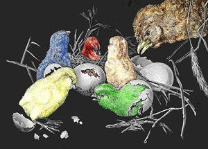 The hatching of chicks. - Neko92vl