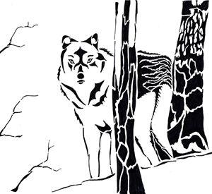 Black Arctic Wolf