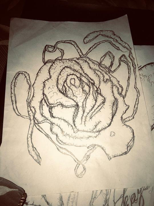 Love Valentines Rose - Love valentines rose