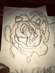 Love Valentines Rose