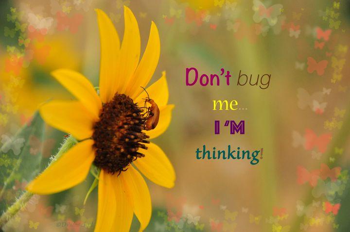 Do Not Bug Me - Fine Art by Debby