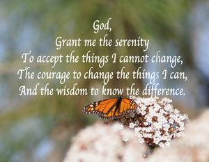 Monarch Serenity Prayer - Fine Art by Debby