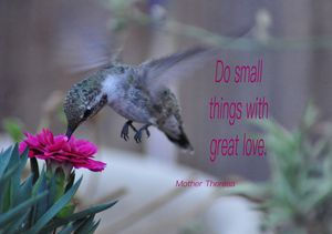So Small Things With Great Love