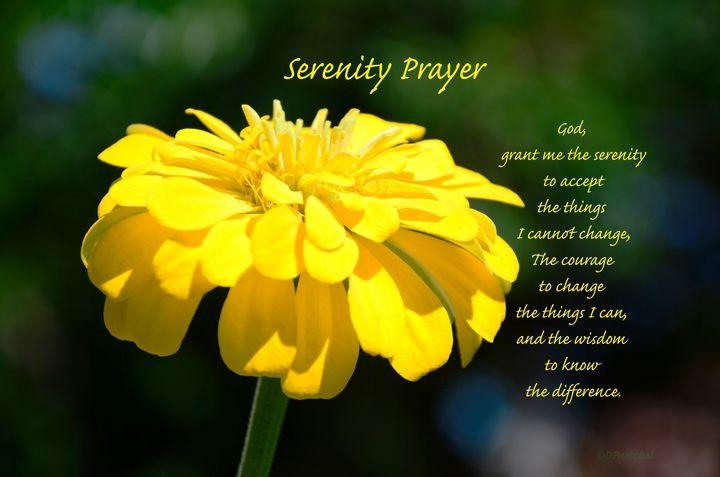 Yellow Zinnia Serenity Prayer - Fine Art by Debby