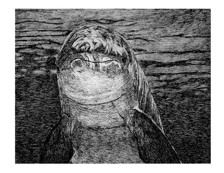 Dolphin Smile - Naughty Jesus