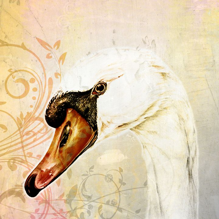 White Swan, Vintage - Happy Bird Studio