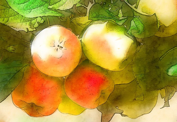 Apples - Created by Laurel