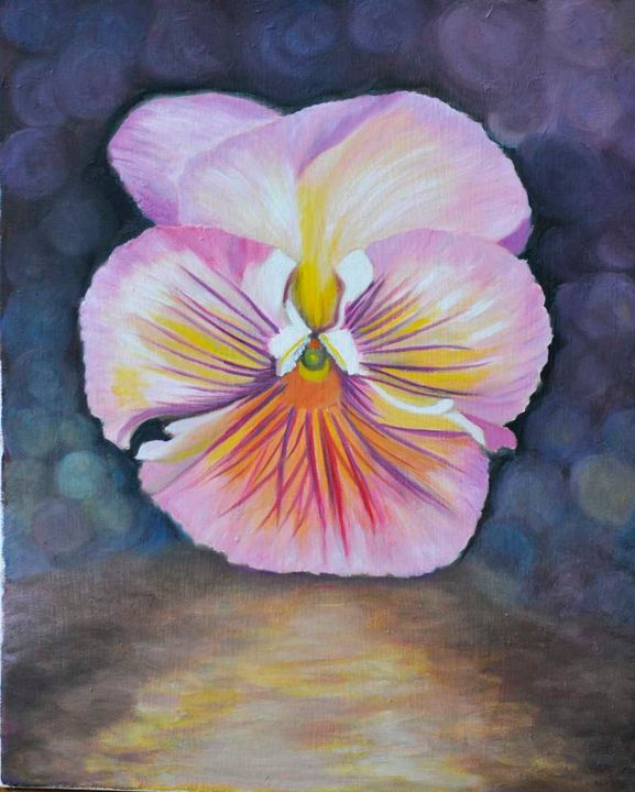 Violet Pansy blossom (90) - Flower Art Gallery