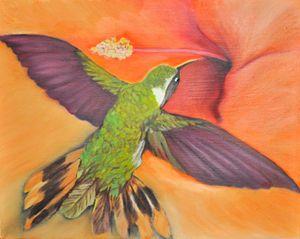 Hibiscus blossom & Hummingbird (91)
