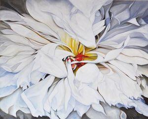 White Dahlia blossom (100)