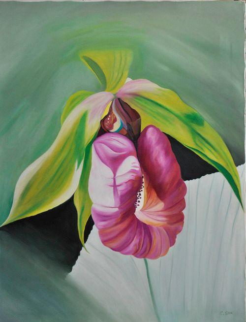 Lady Slipper Orchid (151) - Flower Art Gallery