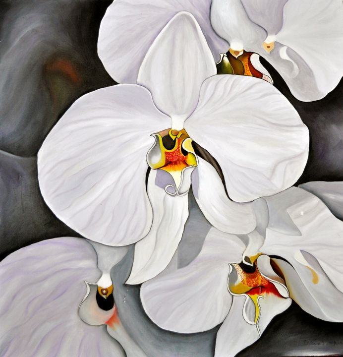 Phalaenopsis orchid blossoms (193) - Flower Art Gallery