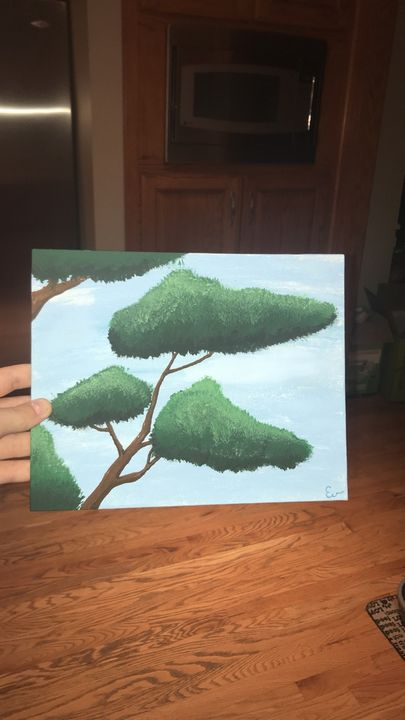 Bonsai Tree - Ev jones