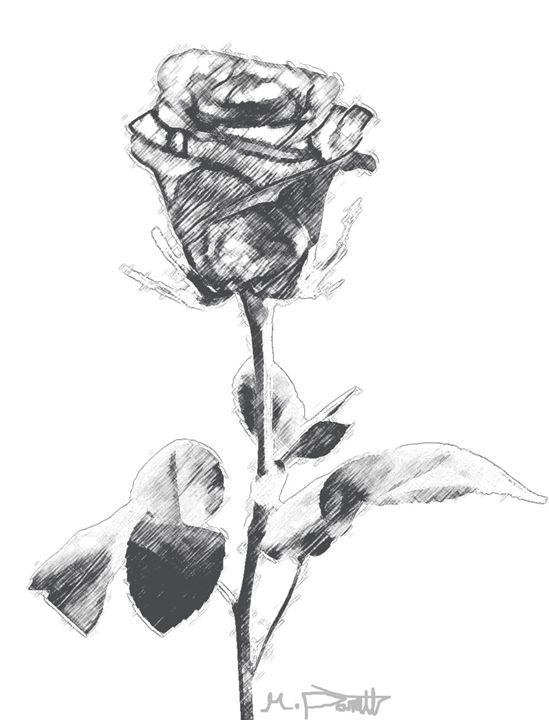 Rose - Mike