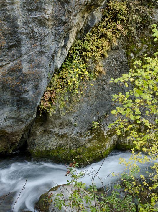 A Canyon Stream - Rick Nye's Art On Canvas