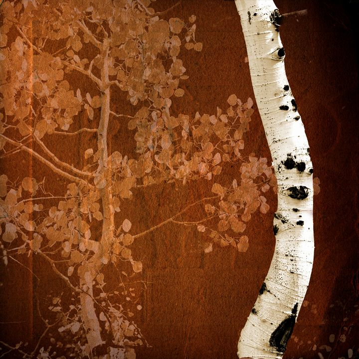 Aspen Abstract - Rick Nye's Art On Canvas
