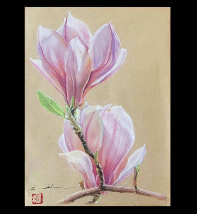 Magnolia # 1 - Leesa Pertsinidis Fine Art