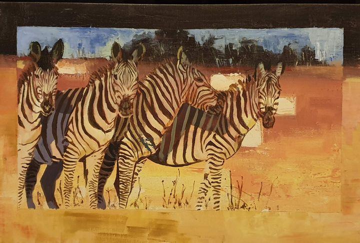 Zebras - aniazmand