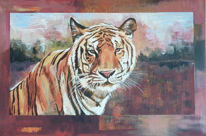 Tiger - aniazmand