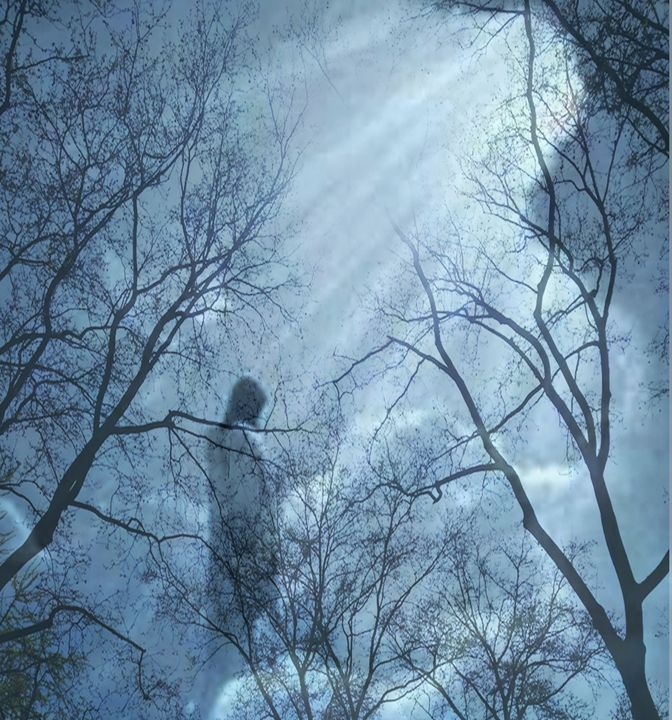 Into The Light - Tina Mancusi