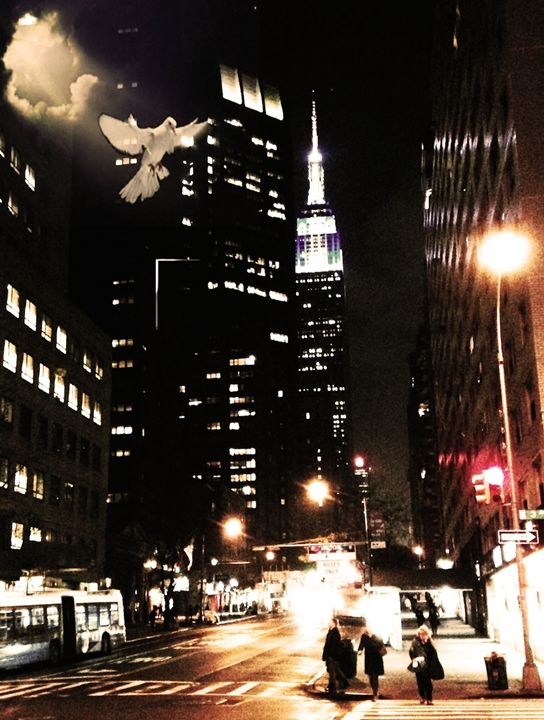 3rd Avenue Dove - Tina Mancusi