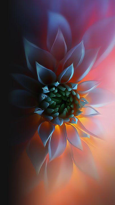 Blended Bloom - MERCER
