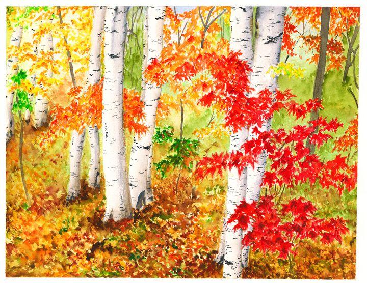 Birch Tree Forest - Bobology