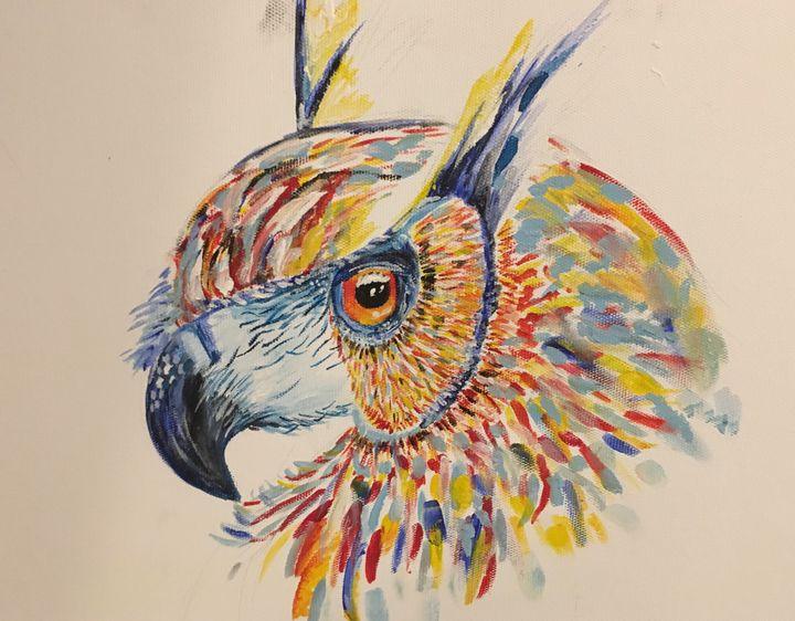 An owl - Laskari