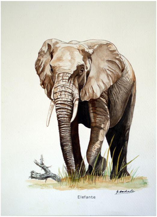 Elephant - José De Andrade artworks