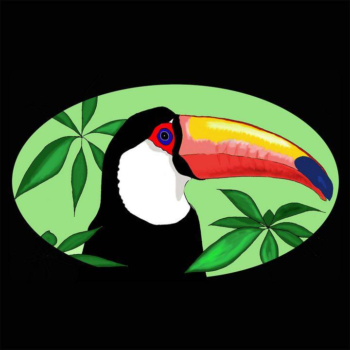 toucan - Nika