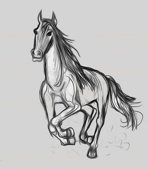 horse - Nika