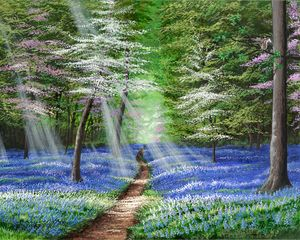 The Bluebelled Path